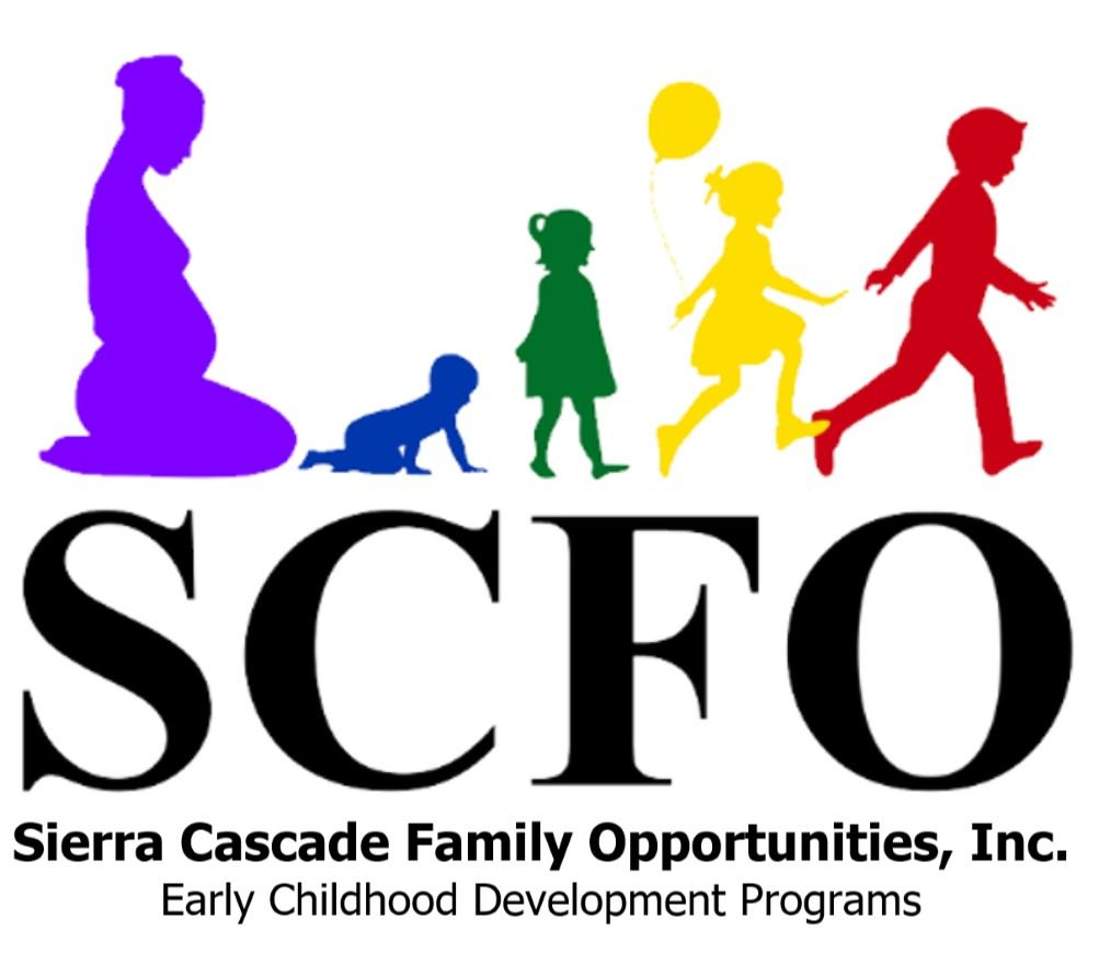 SCFO Logo Opens in new window